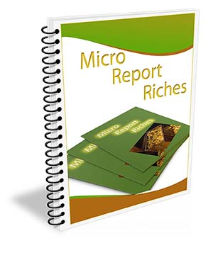 Micro Report Riches